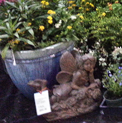 Fairy Gardens with Nancy Marquis